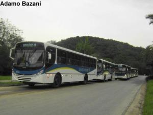 Ônibus adaptados para passageiros com deficiência