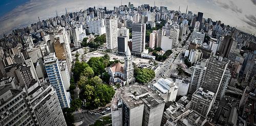 Foto de Ullysses Martins Moreira Neto - 1o Concuso de Fotos de Árvores SP
