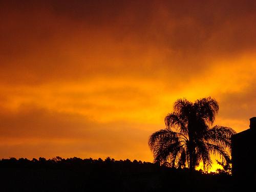 Por do sol da Vila Jacui