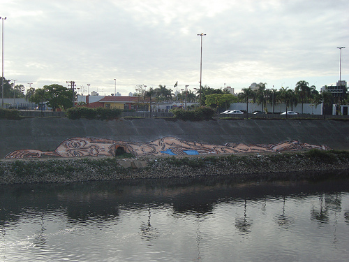 Arte no Rio Tietê