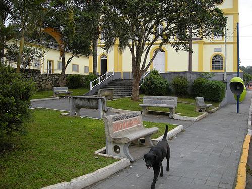 Banco de Taiaçupeba