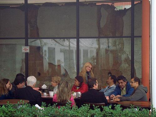 Reunião do Adote dia 11 de junho 2011